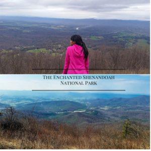 The Enchanted Shenandoah National Park-3