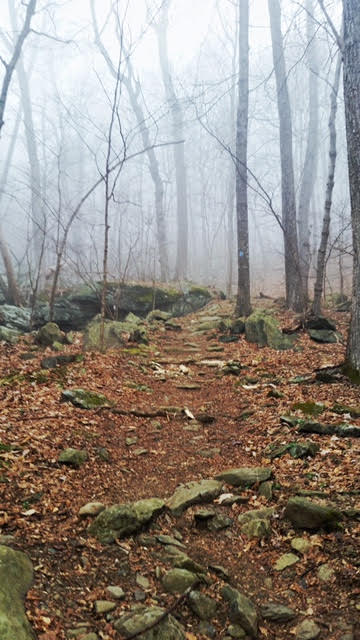 Fog in trail